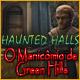 novos jogos de computador Haunted Halls: O Manicômio de Green Hills