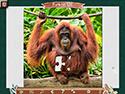 Computerspiele herunterladen : 1001 Jigsaw-Chroniken der Erde 6