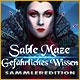 Sable Maze: Gefährliches Wissen Sammlerediton