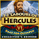 Køb Billige PC Spil Online : 12 Labours of Hercules VI: Race for Olympus Collector's Edition