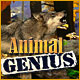 Animal Genius game screenshot