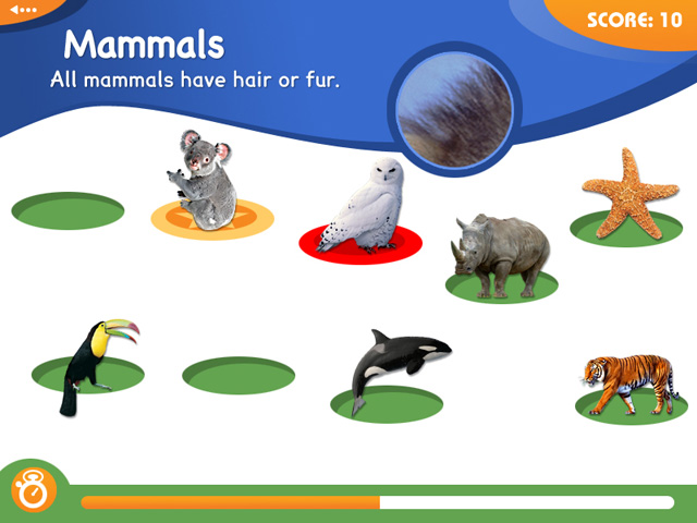 Animal Genius Screenshots