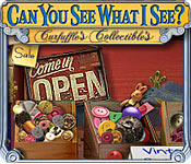 Can You See What I See? Feature Game