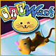 Cat Wash Game
