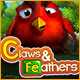 Claws & Feathers Game