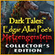 Dark Tales: Edgar Allan Poe's Metzengerstein Collector's Edition Game