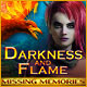 Darkness and Flame: Missing Memories Game