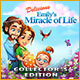 Delicious: Emily's Miracle of Life Collector's Edition