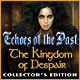 Echoes of the Past: The Kingdom of Despair Collector's Edition Game