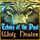 Echoes of the Past: Wolf Healer Game