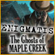 Enigmatis: The Ghosts of Maple Creek - thumbnail