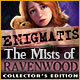 Enigmatis: The Mists of Ravenwood Collector's Edition Game