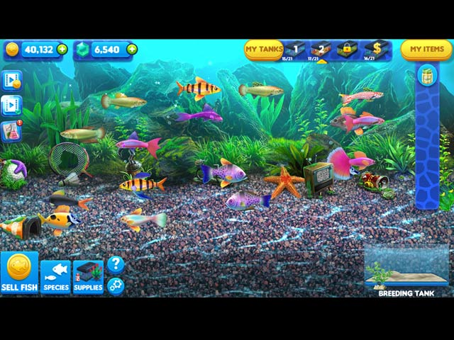 Fish tycoon 2 virtual aquarium free download full version for Fish tycoon 2 guide