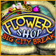 download Flower Shop - Big City Break free game