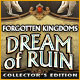 Forgotten Kingdoms: Dream of Ruin Collector's Edition Game