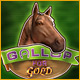 Gallop for Gold Game