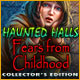 Haunted Halls: Fears from Childhood Collector's Edition Game