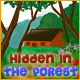 Free online games - game: Hidden in the Forest