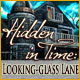 Hidden in Time: Looking-glass Lane Game