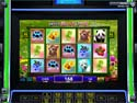 IGT Slots: Wild Bear Paws