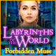 Labyrinths of the World: Forbidden Muse Game
