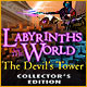 Labyrinths of the World: The Devil's Tower Collector's Edition Game