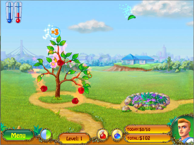 Click To Download Money Tree