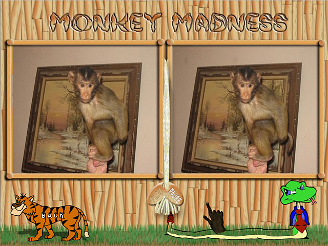 Click To Download Monkey Mania