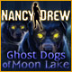 download Nancy Drew: Ghost Dogs of Moon Lake free game