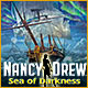 Nancy Drew: Sea of Darkness Game
