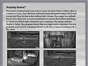 Download Nancy Drew: Ghost Dogs of Moon Lake Strategy Guide ScreenShot 2