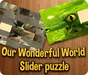Our Wonderful World Game Featured Image