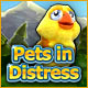 Pets in Distress