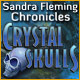 Sandra Fleming Chronicles: The Crystal Skull