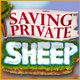 Saving Private Sheep Game