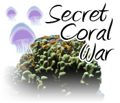 Secret Coral War