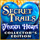Jauna datorspele Secret Trails: Frozen Heart Collector's Edition