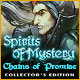 Spirits of Mystery: Chains of Promise Collector's Edition Game