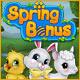 Spring Bonus Game