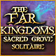 Buy PC games online, download : The Far Kingdoms: Sacred Grove Solitaire