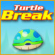 Turtle Break