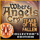 Where Angels Cry: Tears of the Fallen Collector's Edition Game