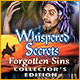 New computer game Whispered Secrets: Forgotten Sins Collector's Edition