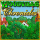 Woodville Chronicles picture