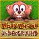 Buy PC games online, download : Word Whomp  Underground