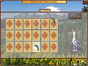 World Riddles: Animals Screenshot