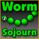 Worm Sojourn