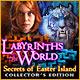 descargar juegos de ordenador : Labyrinths of the World: Secrets of Easter Island Collector's Edition