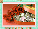 1001 Jigsaw Home Sweet Home: Cérémonie de mariage