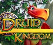 Druid Kingdom